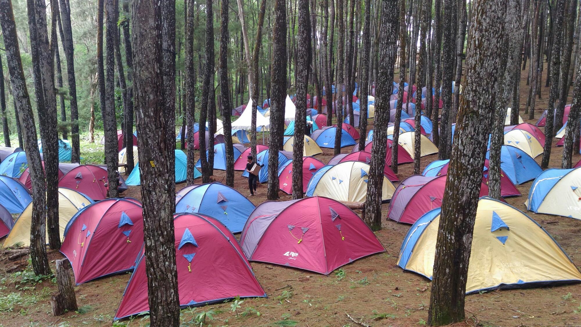 Paket Sewa Tenda Dan Pasang Wirajaya Adventure Tas Kap 4 5 6